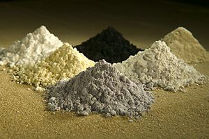 India must focus on rare earths as 'allies' move to lower their dependency on China
